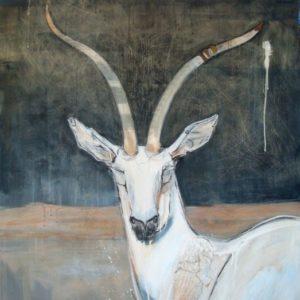 gazelle_web